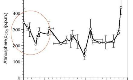 Wie weit steigt CO2 in der Erdatmosphäre noch an und welche Konsequenzen hat dies?