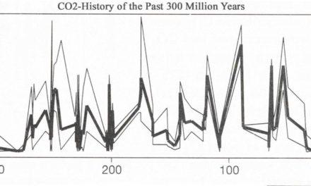 Ozeanversauerung: Der böse kleine Bruder der Klimaerwärmung