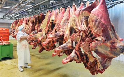 Fleischkonsum Ein Ablenkungsmanöver der WHO Auf dem Weg zur Weltregierung
