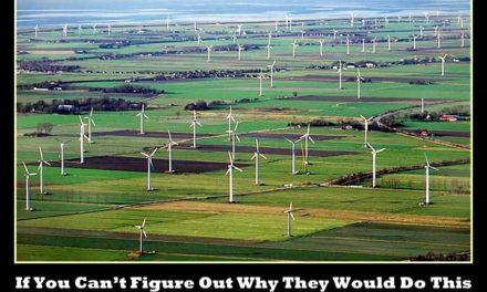 Wer möchte Windturbinen haben?