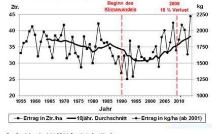 Grüne Abgeordnete Barbara Höhn durch Fakten widerlegt: Der Hopfenertrag steigt trotz Klimawandel