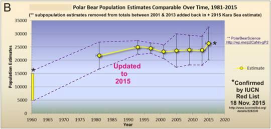 Der Eisbär vermehrt sich stetig – aber sein Aussterben simulieren darf man doch (1)