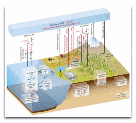CO2 in der Atmosphäre durch Verbrennung verdoppeln? Kann man total vergessen!