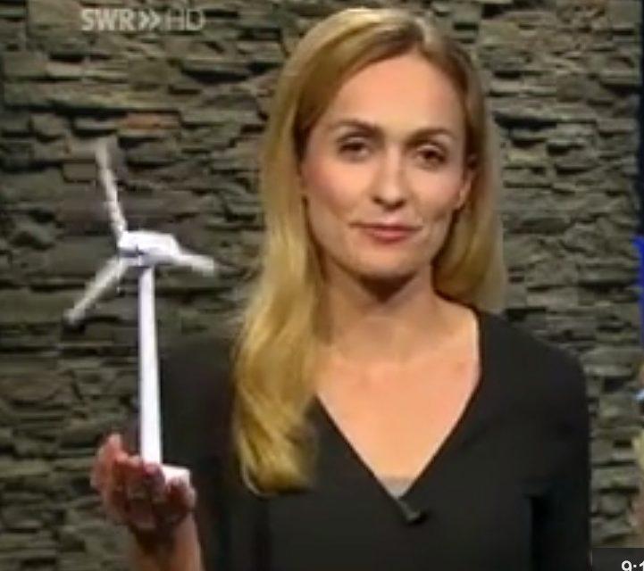 Der Staat gibt, der Staat nimmt…Windstromerzeuger machen überwiegend keine Gewinne