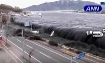 Fukushima — wo sind die Risiken der Kernkraft?