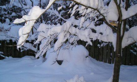 Eine Weihnachtswettergeschichte über das Winterwetter in der Geschichte