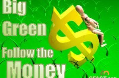 Die geheimen Milliarden von Big Green