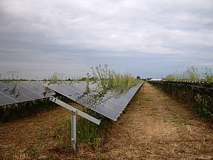 """Verheerendes Ergebnis einer neuen Studie: PV-Systeme in Europa sind eine """"nicht nachhaltige Energiesenke"""""""