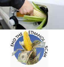 Das amerikanische Biosprit-Debakel