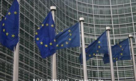 """Grüne Lobby erbost: """"EU-Führer verabschieden sich von Umweltpolitik"""""""