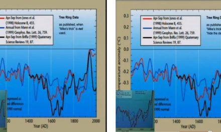Bestandsaufnahme von Hide-The-Decline: der schwarze Dienstag der Klimawissenschaft
