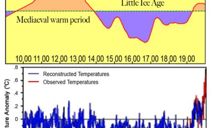 Der Erfinder des Hockeyschlägers der globalen Erwärmung demontiert sich selbst*