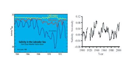 Droht unseren Ozeanen die Übersäuerung durch den CO2 Anstieg?