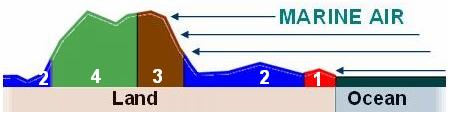 Der Wärmeinseleffekt als maßgeblicher Treiber der gemessenen Temperaturen