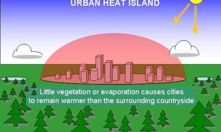 Der Wärmeinseleffekt (WI) als Antrieb der Temperaturen – eine Wertung der DWD-Temperaturmessstationen