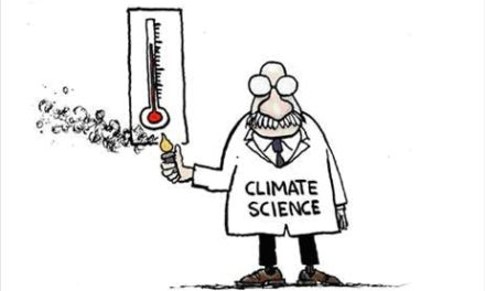 Wärmstes Jahr 2010, aber nicht in Deutschland, auch nicht in Europa, nicht auf den Weltmeeren, …, wo denn eigentlich?