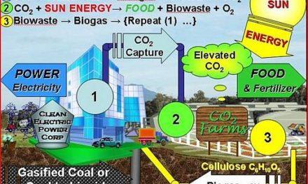 CO2 ist Pflanzenfutter (Saubere Kohle – WAS?!)