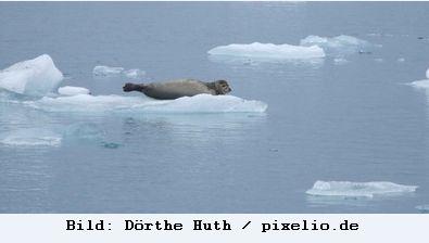 Jede Tonne emittiertes CO2 führt zu einem Abschmelzen des Arktiseises um drei Quadratmeter