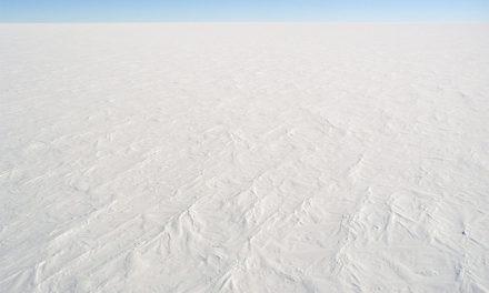 Bittere Kälte weltweit – Rekord-Wiedervereisung in der Arktis – möglicher 100-Jahres-Winter in UK – Schnee in Neuseeland
