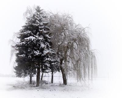 Wo ist der CO2-Treibhauseffekt? Der Januar wird seit über 30 Jahren kälter