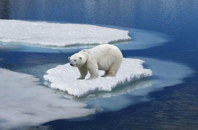Weitere Daten-Manipulationen seitens NOAA, NASA, HadCRUT … Vergangenheit kälter, Gegenwart wärmer gemacht