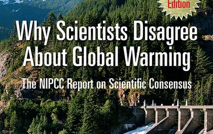 Warum sich Wissenschaftler bzgl. globaler Erwärmung uneins sind