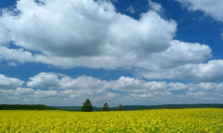 Mai in Deutschland: Weniger wonnig als zu Mozarts Zeiten- keine Klimaerwärmung feststellbar