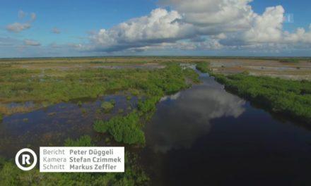Klimawandel – FakeNews in SRF1 RUNDSCHAU am 26. April 2017