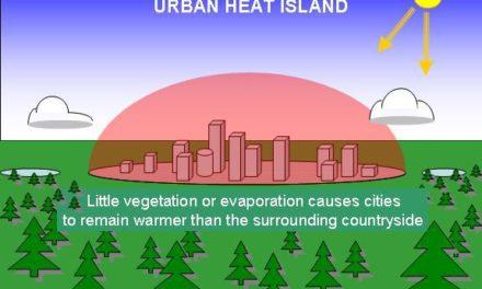 Wärmeinsel- und Stadtklimaeffekte als Erwärmungsverursacher Teil 1: Höhe des Stadt-Stadtrandeffektes von Zürich.