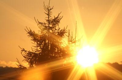 Der Kampf gegen den Klimawandel kann in Zukunft zu mehr Krebs-Todesfällen führen