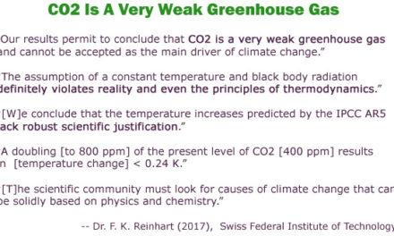 Schweizer Physiker: IPCC-Hypothesen ,vergewaltigen die Realität' … CO2 nur ein ,sehr schwaches Treibhausgas'