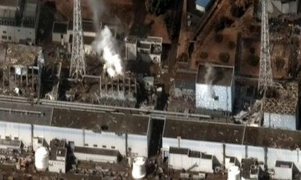 Fukushima: Schuldige werden gesucht
