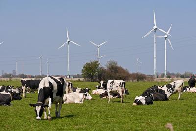 Die GRÜNEN: Es mangelt weder an erneuerbaren Energien noch an der Entwicklung von Speichern und Netzen