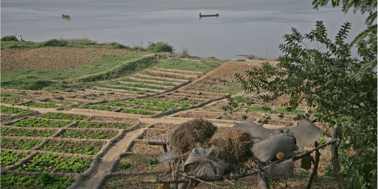 Immer wieder muss der Tschad-See unter dem Klimawandel leiden, oder: Warum steht in Studien der GRÜNEN häufig so viel Falsches drin?
