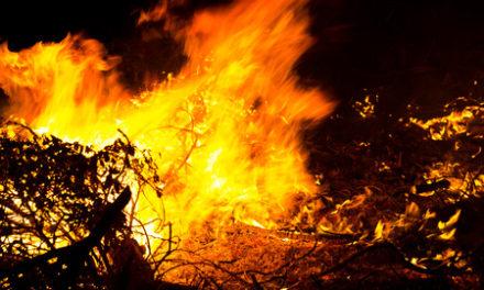 Katastrophales Feuer-Management stürzt Kalifornien ins Chaos