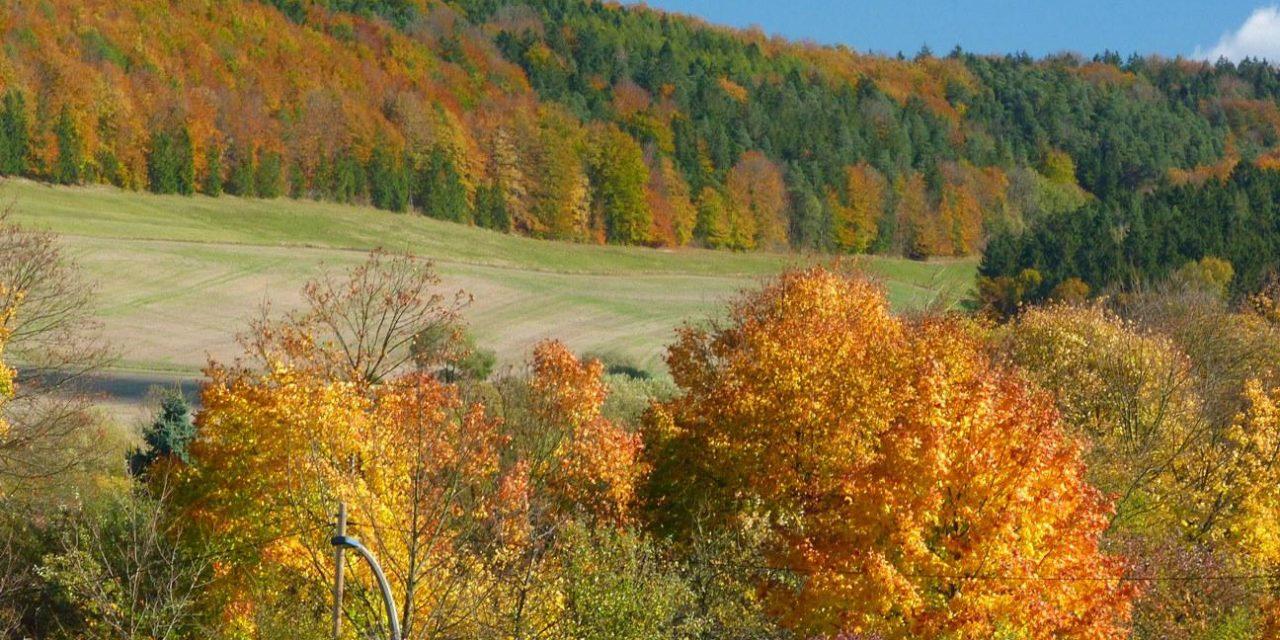 Milder Oktober 2017: Eine bloße Laune der Natur?