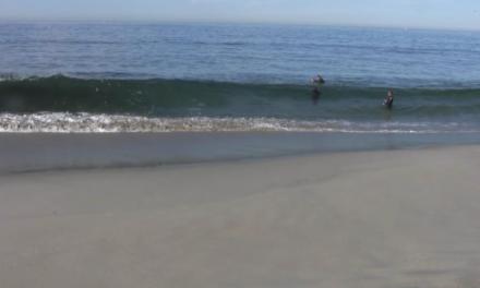 Meeresspiegel: Anstieg und Absinken – Teil 1
