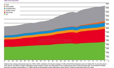 Die Illusionen der neuen erneuerbaren Energien (NEE)