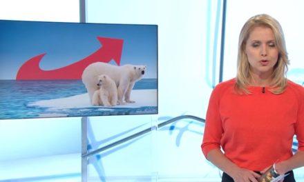 """rbb Kontrastesendung über """"Klimaleugner in der AfD"""" – Schrott in höchster Videoqualität"""