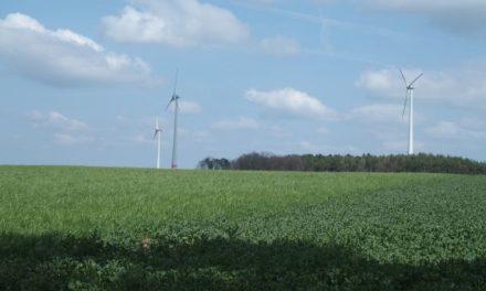 Lärmstudie in Süd Australien will die neurologischen Auswirkungen der Emissionen von Windparks feststellen.