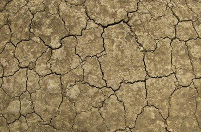 Mit Klimapolitik direkt in die Hungerkatastrophe – Neue Studie aus den USA