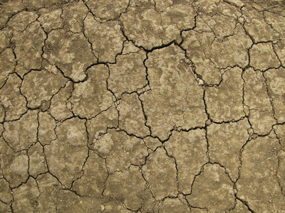 Wie ungewöhnlich ist die aktuelle Trockenperiode?