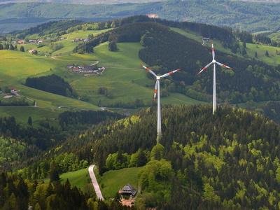 Windkraftanlage bei Haltern bricht – und Staatswälder sollen zu Windparks werden