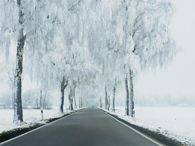 Wir sollten jetzt die realen und nachteiligen Folgen von Abkühlung fürchten