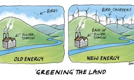 Vom Winde verweht – Fünfundzwanzig Täuschungen der industriellen Windenergie – Teil 1 von 2