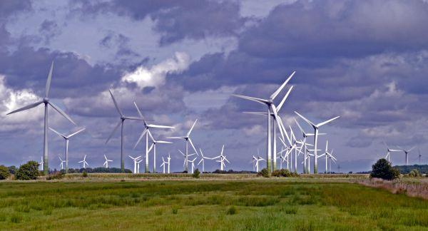Vom Winde verweht? Eine Studie stellt den Rückgang der Windstärke seit 1979 fest