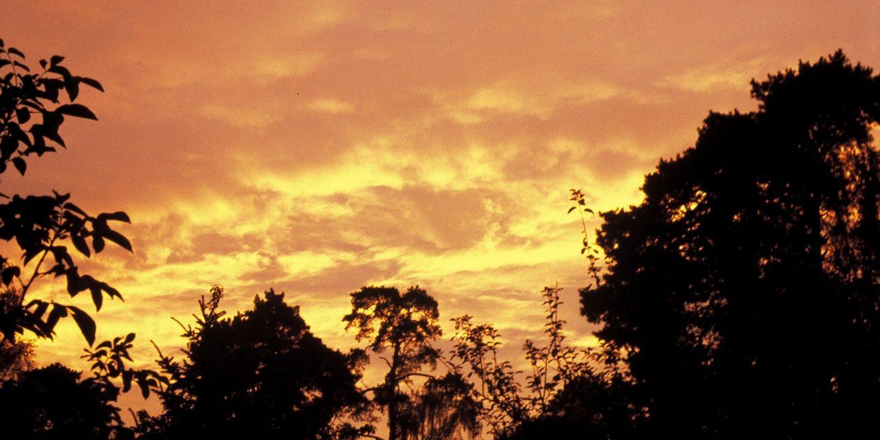 Unser Planet verbrennt – wirklich? Oder nur wegen (bewusst) falsch ausgewerteter Proxidaten?