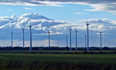 Studie: Lebensdauer von Turbinen in Windparks viel kürzer als erwartet