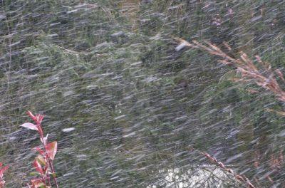 Die Niederschläge, welche uns im Sommer gefehlt haben, werden jetzt im Winter ausgeglichen