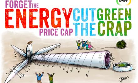 Halb Europa möchte keine Windenergie mehr